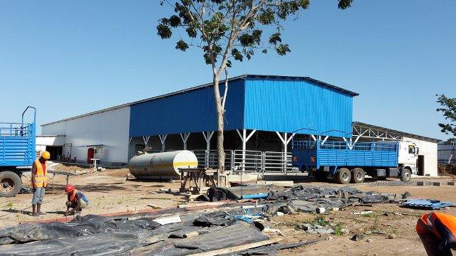 Tanzania mulls mega-meat processing plant