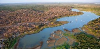 Power project in Tanzania's Selous game reserve continues