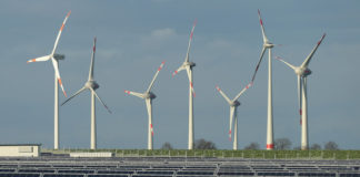 World cities embracing clean energy,shows new report
