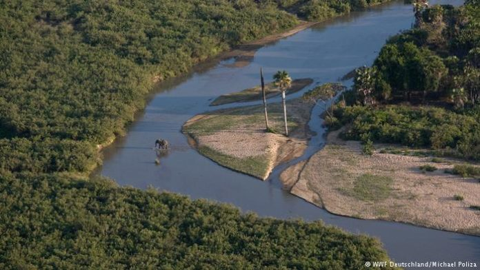 Tanzania seeks AfDB support for power plant in Selous game reserve