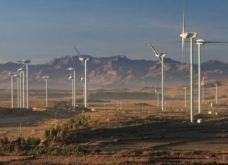 Ethiopia's Assela wind farm project gets financial impetus
