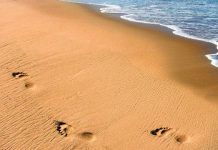 Unregulated sand mining damaging environment-UN Report