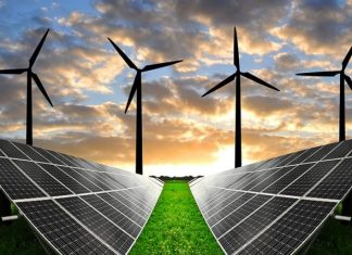 Agency roots for more investment in renewable energy