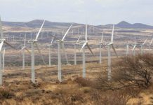 Top 5 Africa's largest wind farms by installed capacity