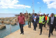 Tanzania banks on ports expansion to boost regional trade