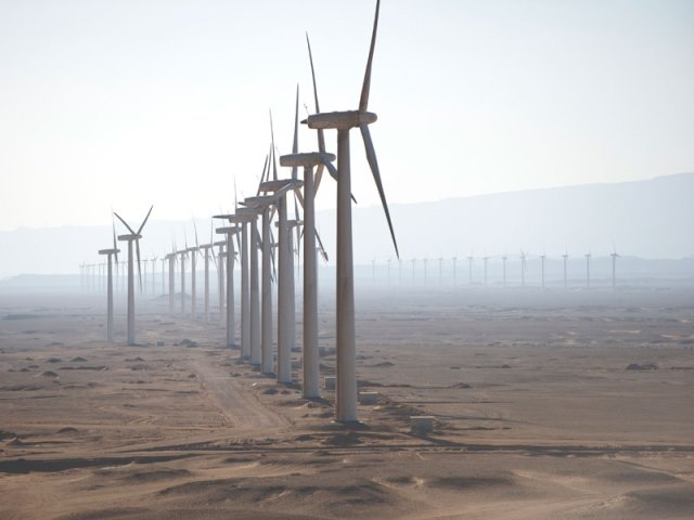 Gulf of Suez wind project gets financial support as birds stare at danger