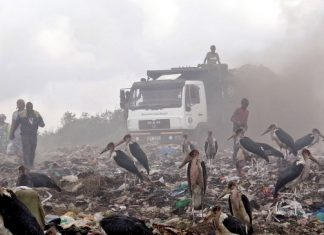 KenGen wants consultant for waste to energy plant in Nairobi