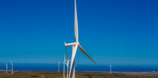 South Africa's Nxuba wind farm begins operation