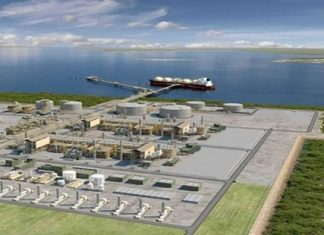 Total halts work on Mozambique gas project citing insecurity