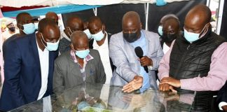 Nakuru commences construction of Ksh 239M smart fish market